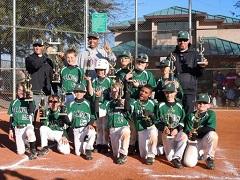 Vegas Venom 9U Baseball Team